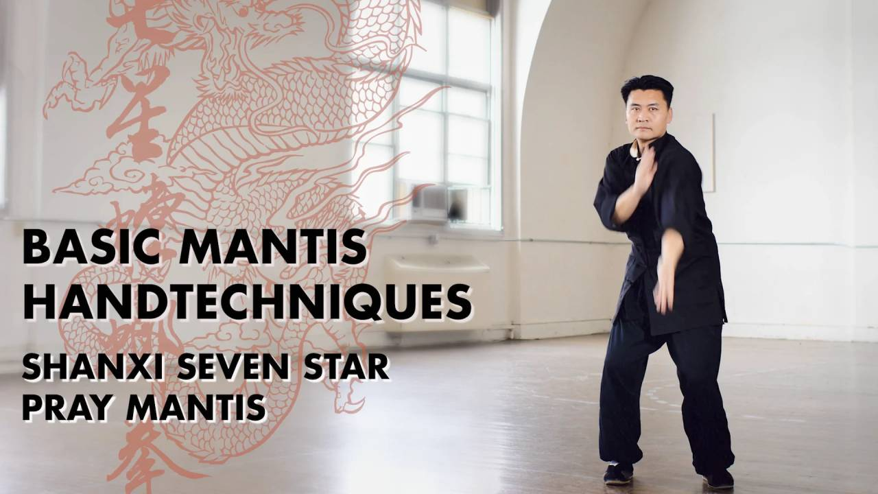 Master Yang – Basic Mantis Hand Techniques