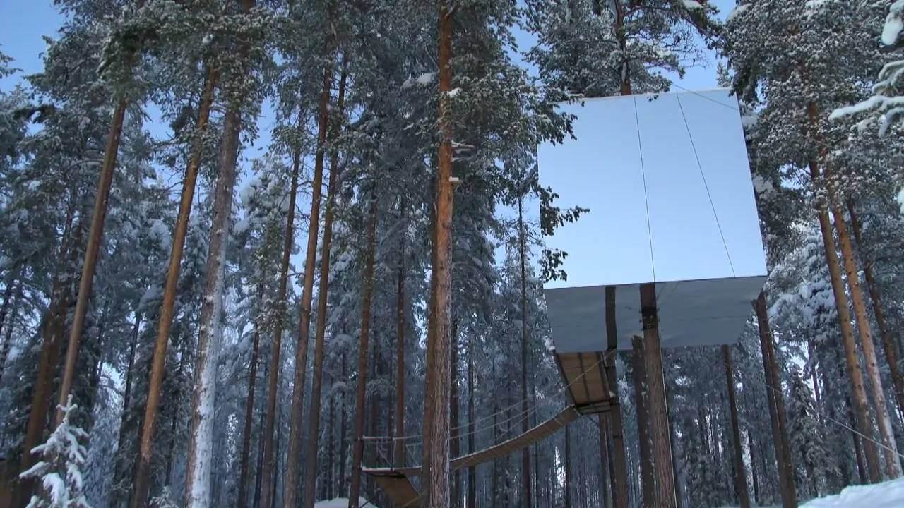 Cinefa Films – The Treehotel